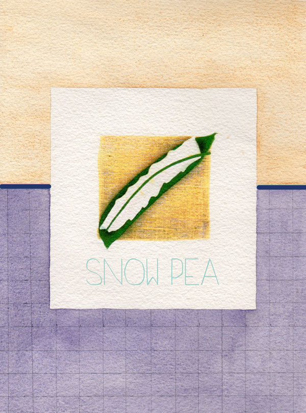 snowpeablog